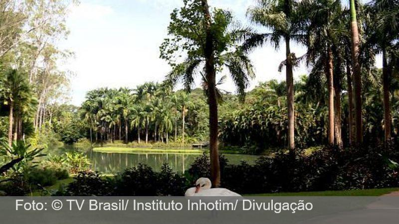 Instituto Inhotim, em Brumadinho (MG), será reaberto ao público