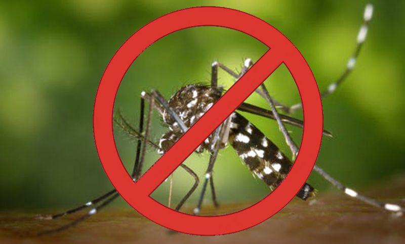 Combate à dengue - PJF realiza blitz educativa no Bairro Poço Rico nesta segunda-feira