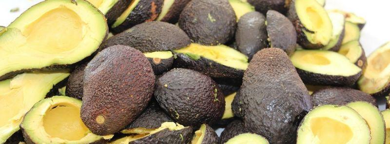 Azeite de abacate é alternativa para alimentação mais saudável
