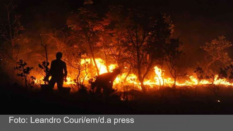 Incêndios nas matas de Minas já superam poder de combate dos bombeiros