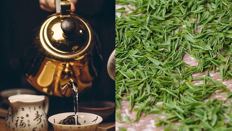 Beber chá verde 3 vezes por semana reduz risco de derrame, diz estudo