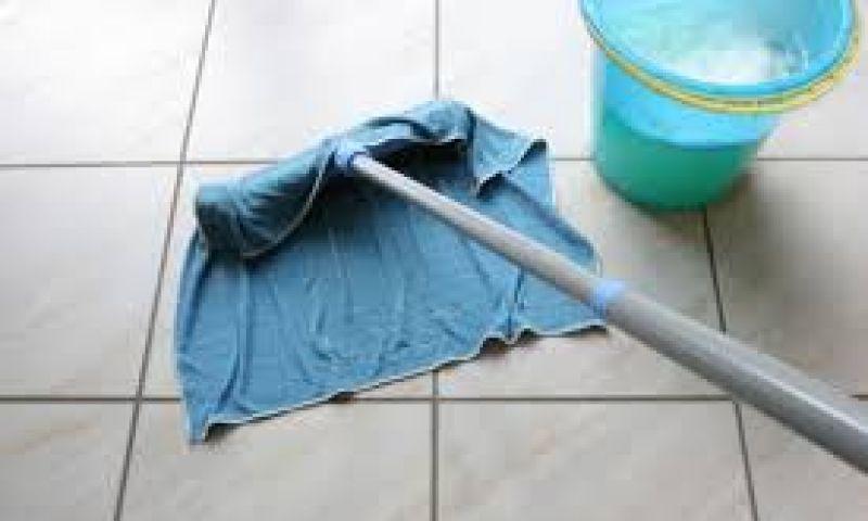 Empresa habilitada para limpar escolas em JF vai receber R$ 11 milhões