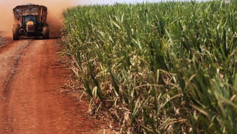 Brasil inicia ação contra restrição chinesa sobre importação de açúcar