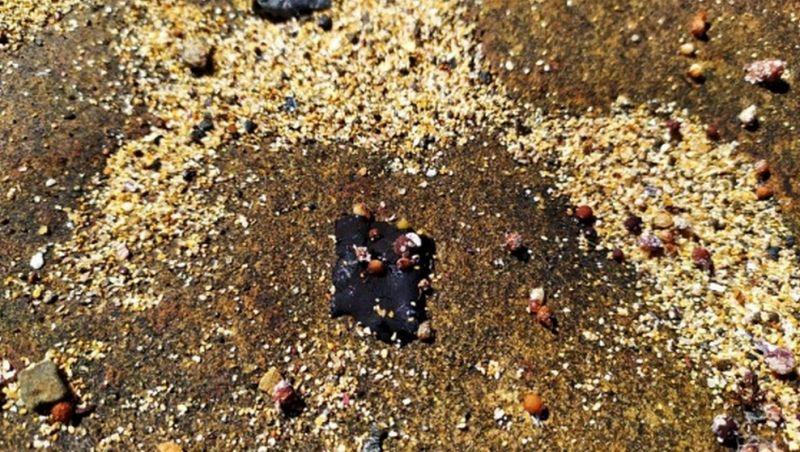 Fragmentos de óleo são recolhidos na região de Abrolhos, diz Marinha