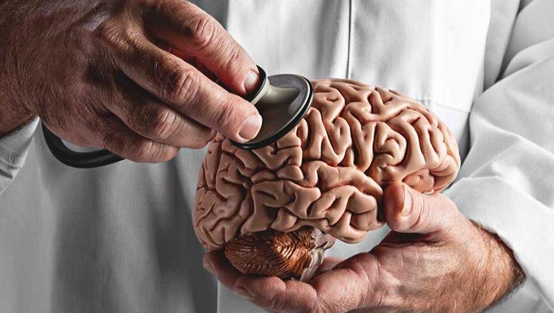 Médicos comemoram hoje o Dia Nacional do Cérebro
