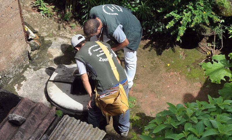Combate à dengue: PJF realiza força-tarefa em 221 quarteirões de dez bairros de JF
