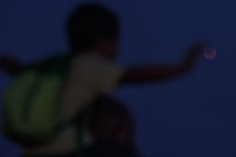 Brasileiros se mobilizam para acompanhar eclipse lunar