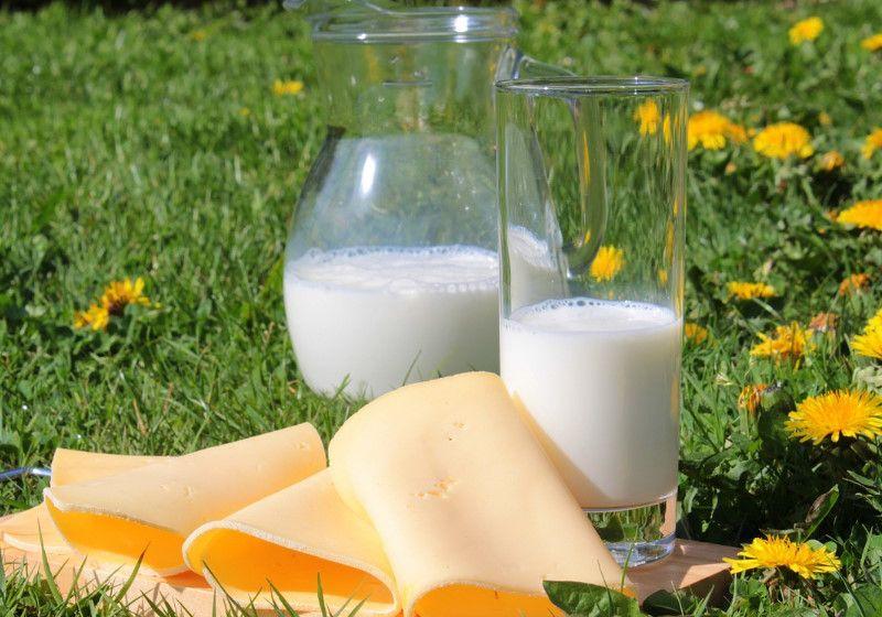 Consumir leite, queijo e iogurte reduz risco de derrame, diz estudo