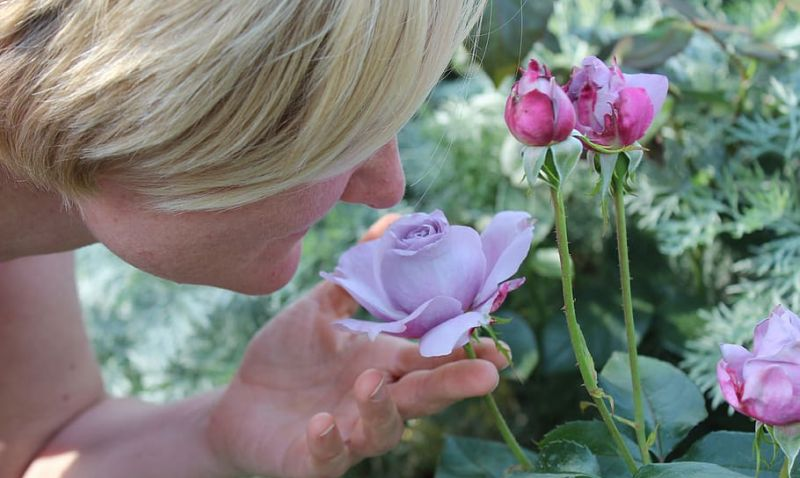 Perda de olfato e paladar podem indicar coronavírus, alertam especialistas