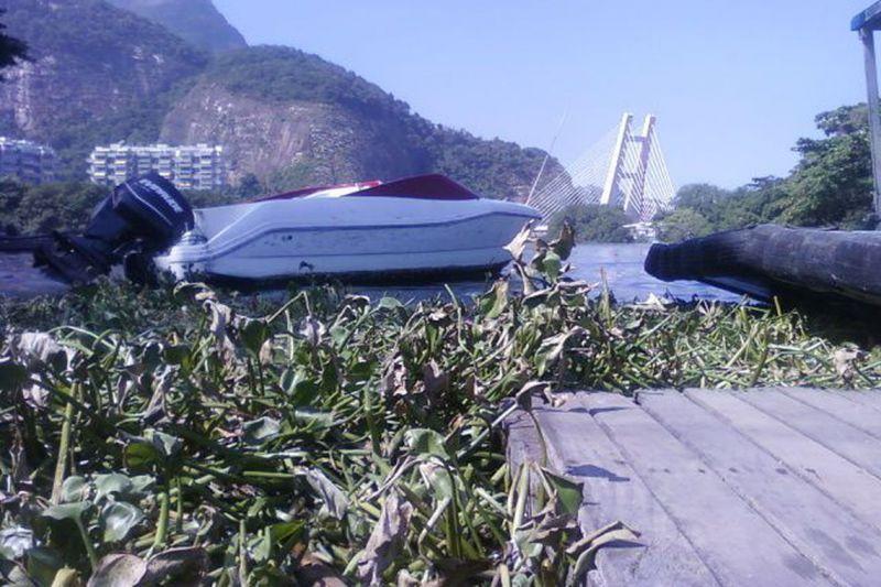 Garis retiram 191 toneladas de gigogas de praias da zona oeste do Rio