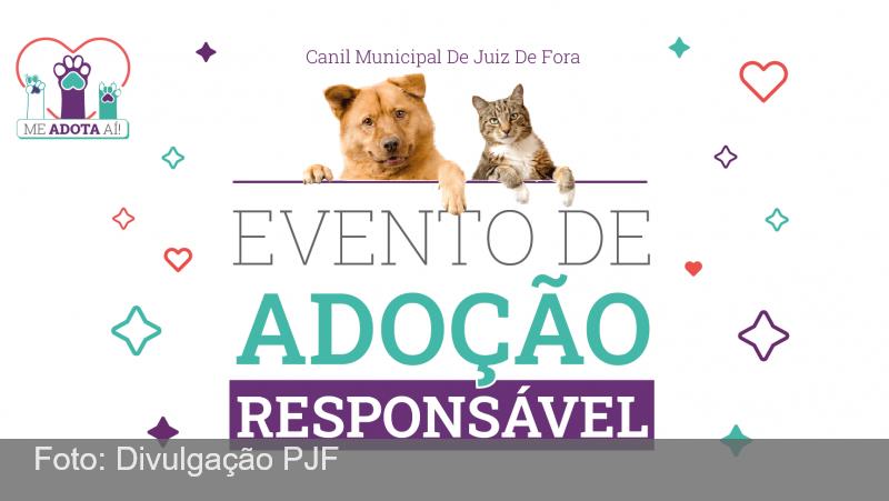 JF: Canil Municipal realiza evento de adoção no Parque da Lajinha neste domingo, 17