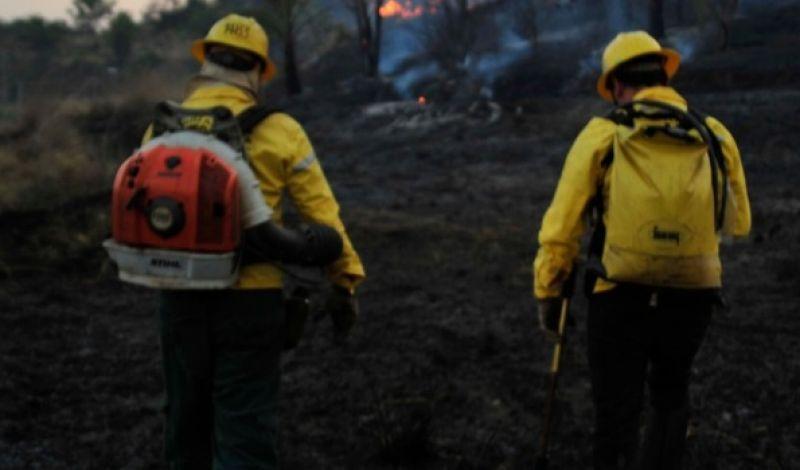 Unidades de conservação reforçam cuidados contra incêndios florestais em Minas