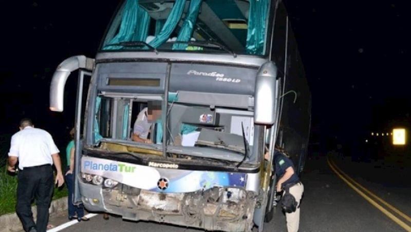 Motorista de ônibus fica gravemente ferido após atropelar vaca na BR-116 em Muriaé