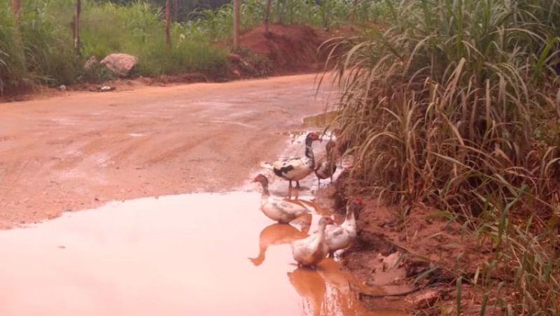 Moradores de Ibitipoca cobram esclarecimentos sobre conservação da LMG-871