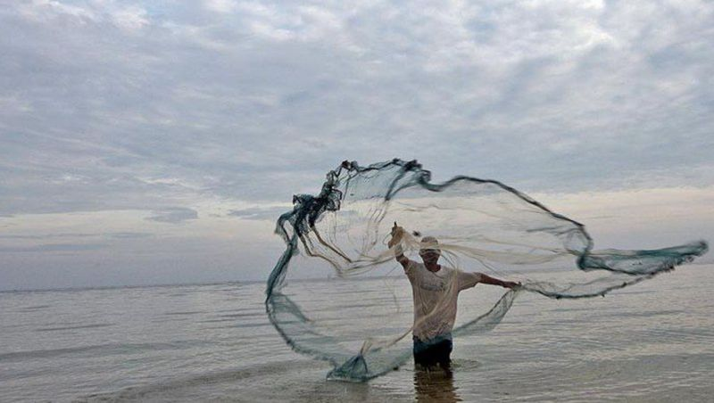 Pesca fantasma ameaça quase 70 mil animais marinhos por dia no Brasil