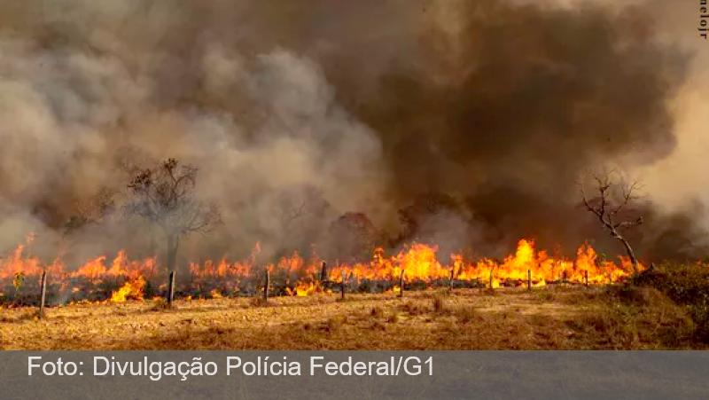 Operação da PF busca responsáveis por queimadas no Pantanal