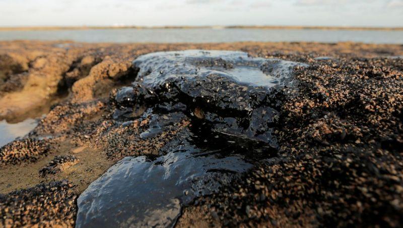 Quatro mil toneladas de óleo já foram retiradas de praias nordestinas