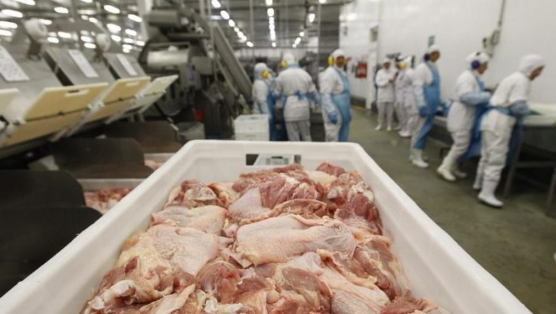 Ministério da Agricultura demite servidores envolvidos na Carne Fraca