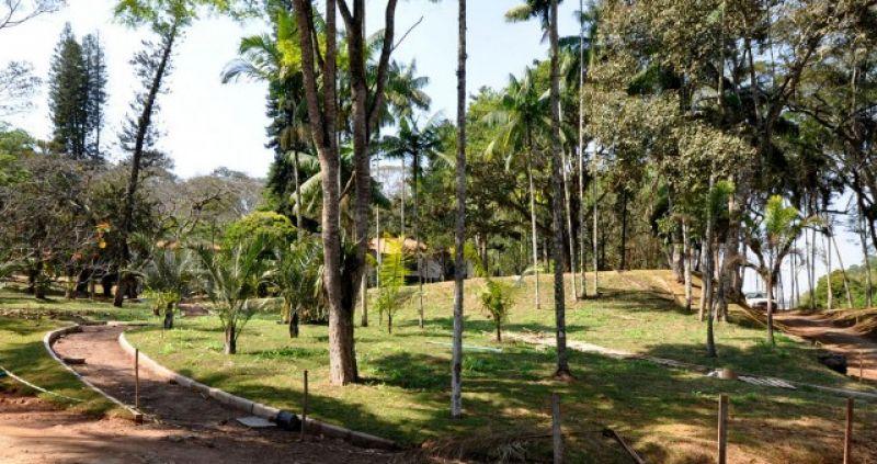 Projeto de educação ambiental no Jardim Botânico da UFJF seleciona bolsistas