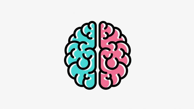 5 mitos sobre o cérebro em que até neurocientistas acreditam