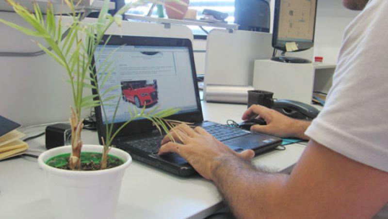 Plantas no trabalho reduzem estresse e melhoram ambiente, diz pesquisa