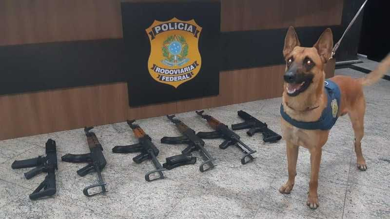 PRF apreende seis fuzis que seriam entregues em comunidades do Rio