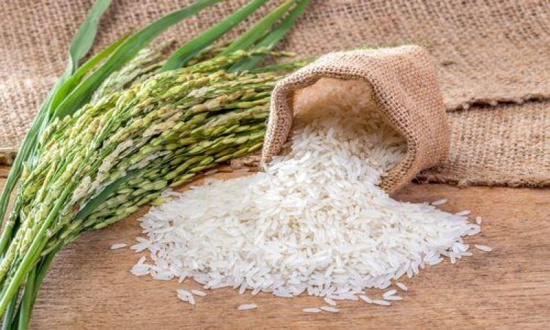 Qual é a melhor forma de consumir arroz e por quê?