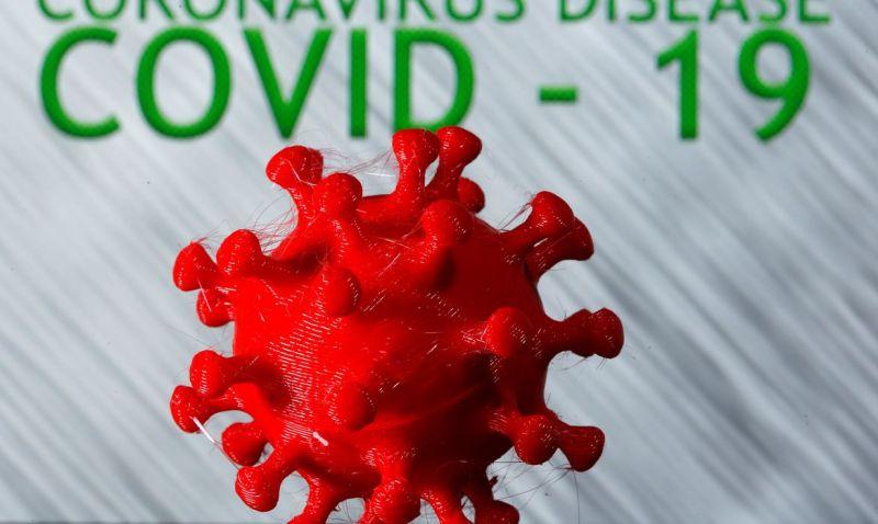 Pesquisadores da USP simulam uso de edição genética contra covid-19