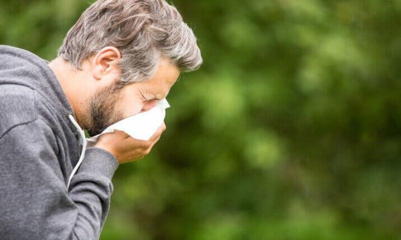 Remédios para combater alergias