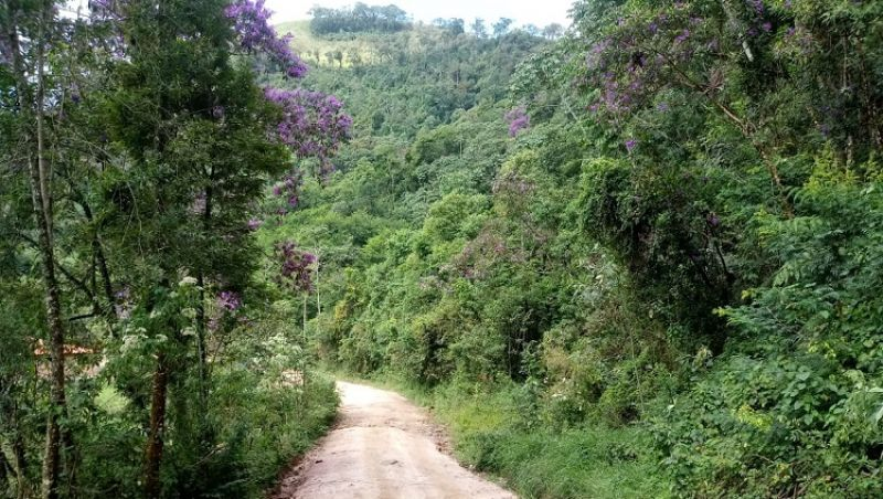Estrada de Ibitipoca retorna à custódia do Estado