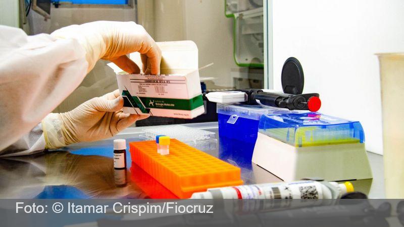Dezenove pesquisadores brasileiros estão entre os mais citados de 2020