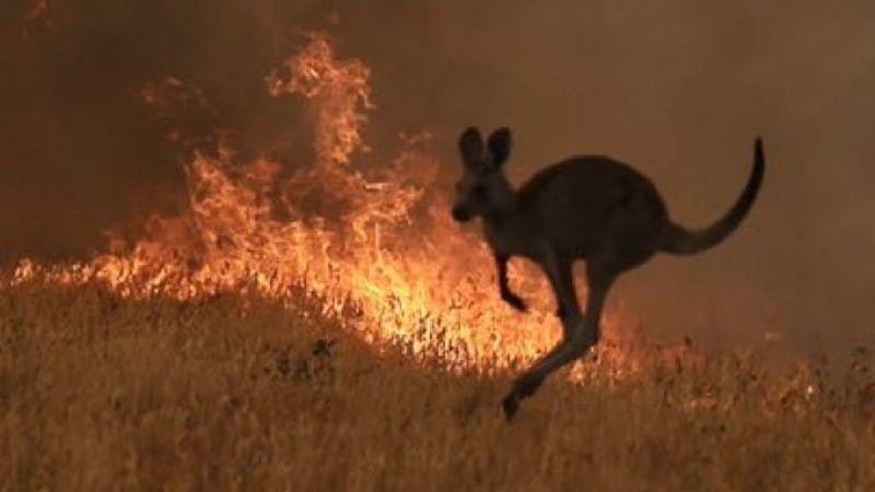 Incêndios: autoridades australianas pedem retirada de 240 mil pessoas