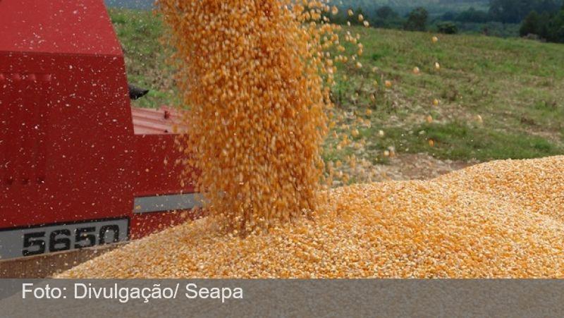 Safra mineira de grãos 2020/2021 é estimada em 15,2 milhões de toneladas