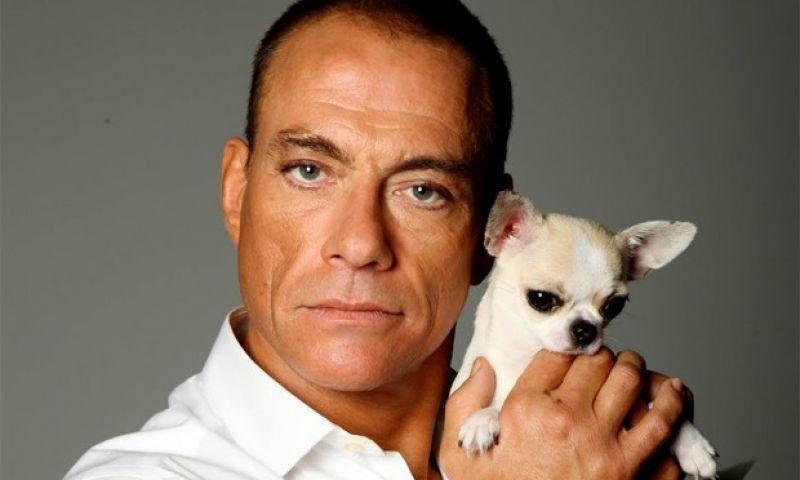 Jean-Claude Van Damme faz discurso machista na TV