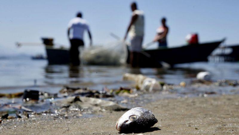 Mutirões de limpeza em praias marcam Semana do Meio Ambiente no Rio