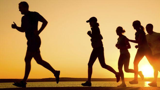 Pesquisa revela como o exercício físico protege o coração