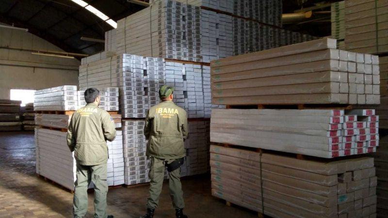 Ibama e PF fazem apreensão de madeira ilegal da Amazônia em São Paulo