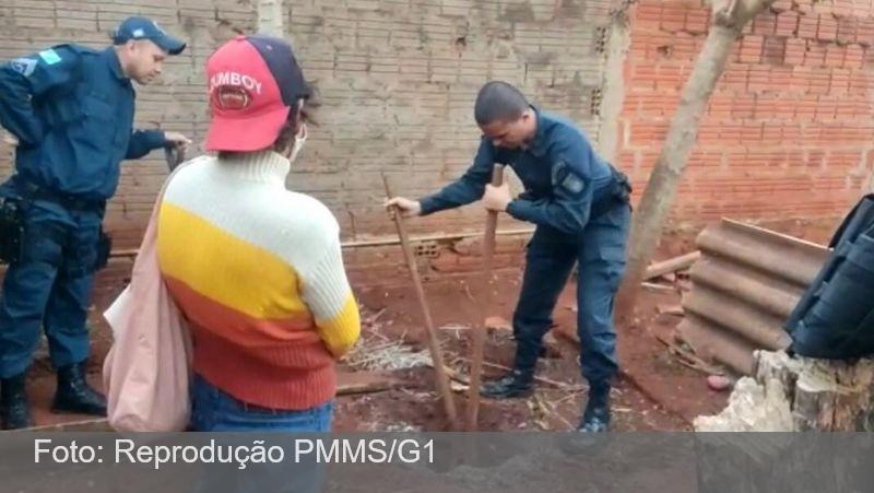 Desaparecido há meses, polícia encontra corpo de idoso enterrado em quintal e sobrinha confessa homicídio