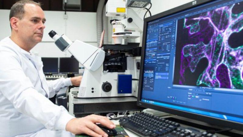Cientistas conseguem produzir leite materno em laboratório