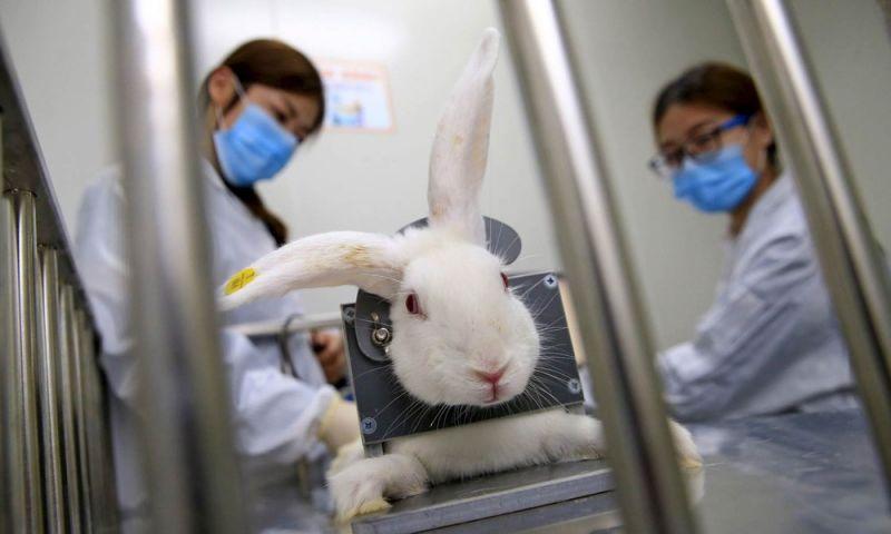 Lei que proíbe teste de cosméticos em animais entra em vigor em Minas