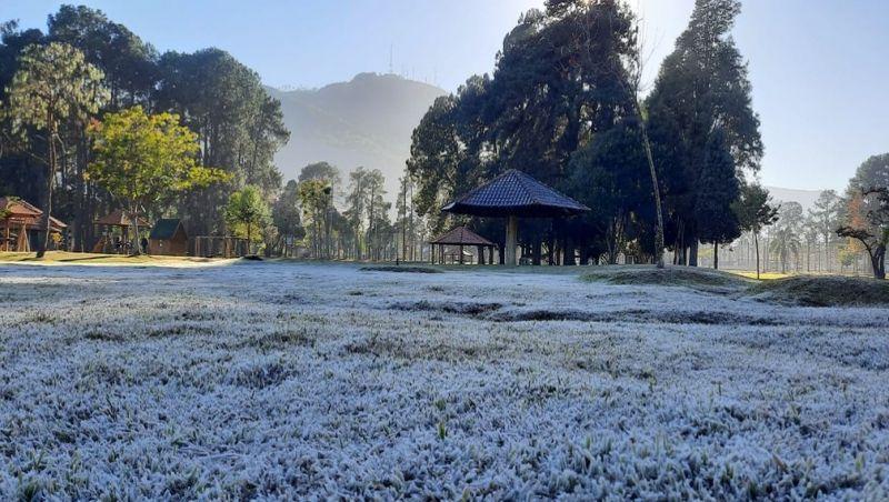 Cidades do Sul de MG têm madrugada mais fria do ano e geada; mínima foi de -3,7º C