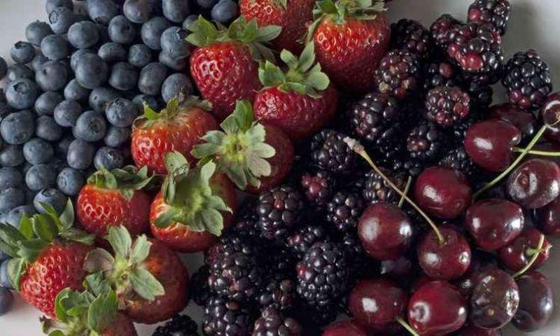 Conheça os benefícios das berries, frutas em alta no Sul de Minas