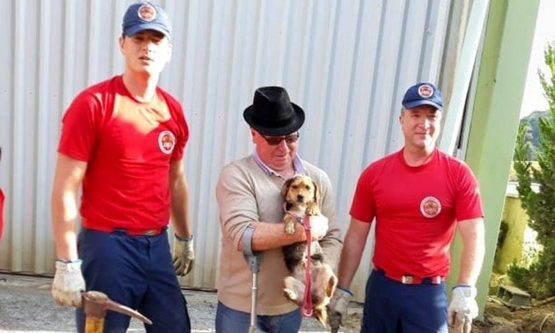 Bombeiros resgatam cadela presa há 5 dias em encanamento em SC; veja vídeo