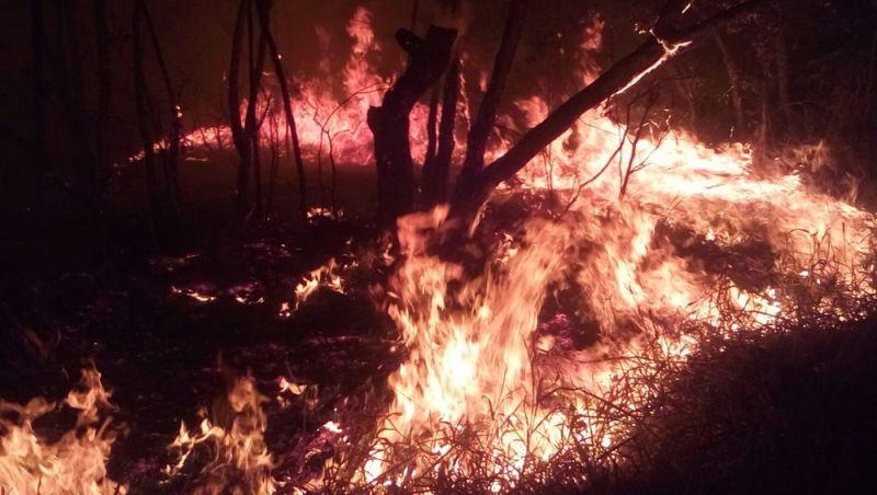 Incêndio destrói 10 hectares de Área de Preservação Ambiental em São João del Rei