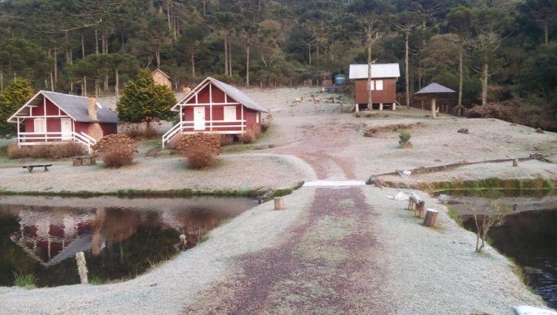Rio Grande do Sul volta a registrar mínimas negativas e geada neste domingo