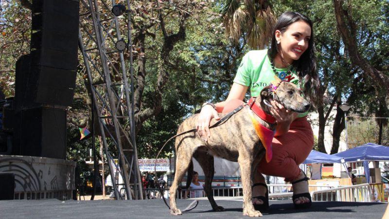 """Animais do Canil Municipal de JF fazem sucesso em desfile no palco do """"Rainbow Fest"""""""