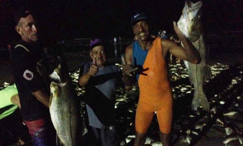 Robalo 'gigante' quebra recordes e vira atração durante pescaria em SP