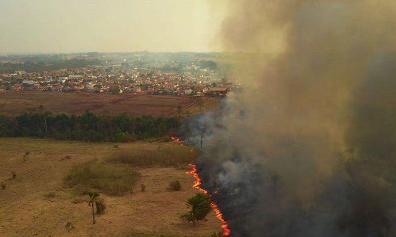 Parlamentares visitam áreas queimadas no Pantanal