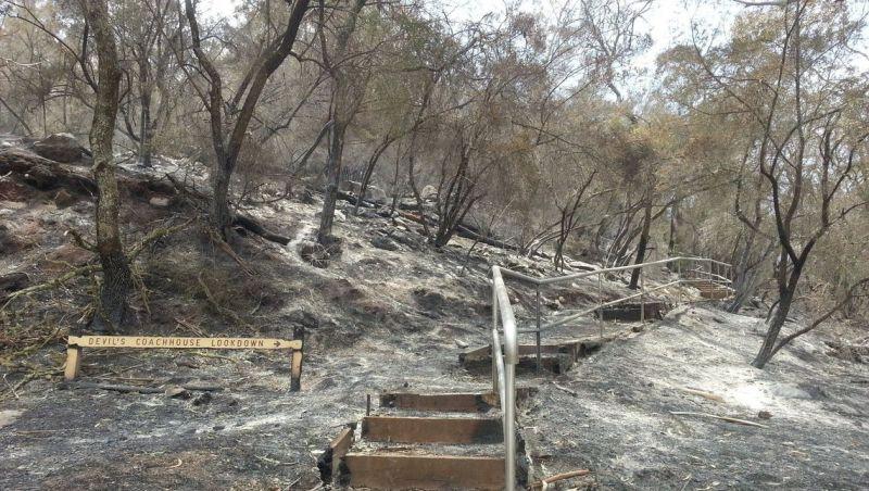 Número de mortos em incêndio na Austrália sobe para 23