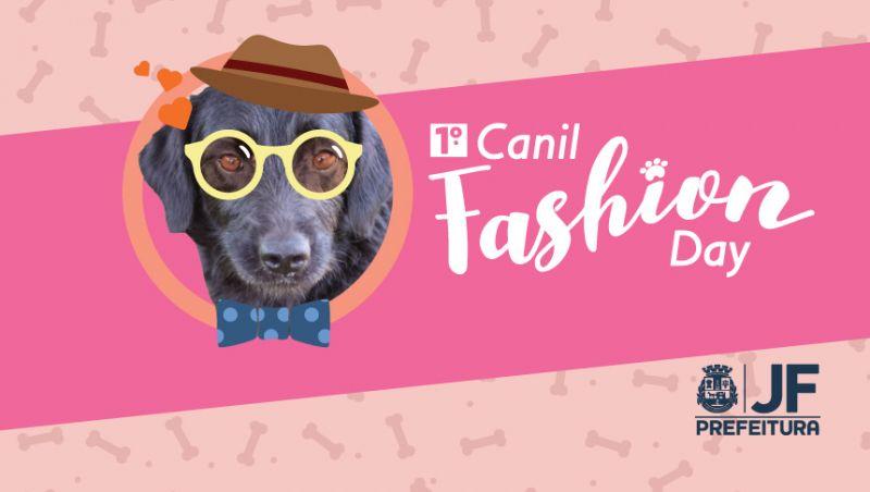 1º Canil Fashion Day – Demlurb promove desfile de cães na Rua Halfeld em Juiz de Fora